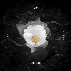 Avicii, Sandro Cavazza Without You cover
