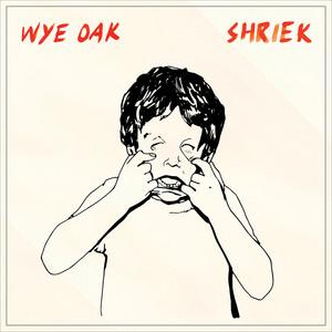 Shriek album