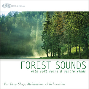 Forest Sounds with Soft Rains & Gentle Winds: Nature Sounds for Deep Sleep, Meditation & Relaxation Albumcover