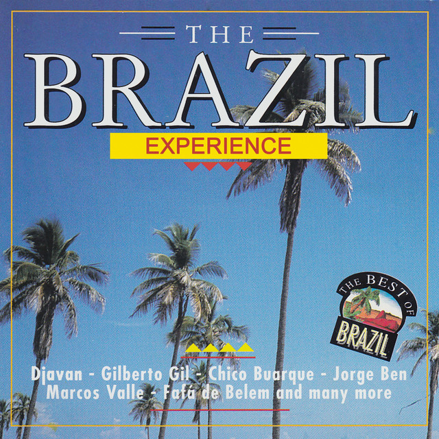 Various Artists The Brazil Experience album cover