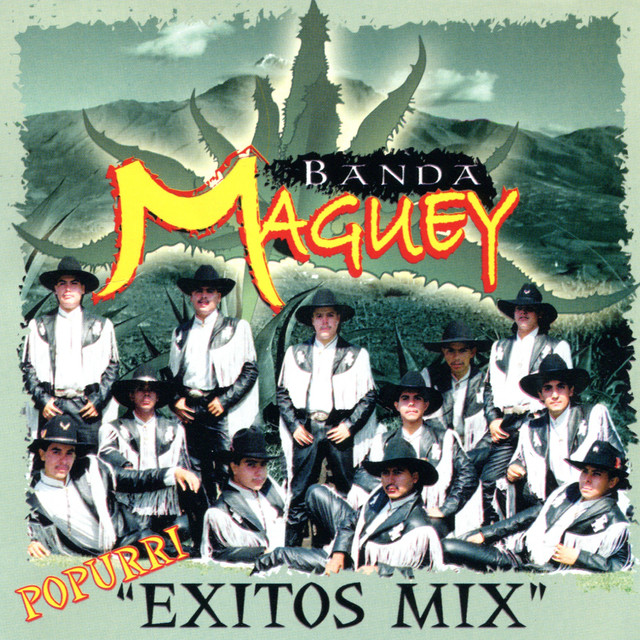 Popurri Exitos Mix