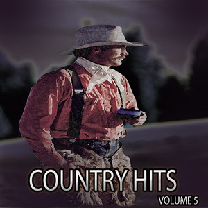 Country Hits, Vol. 5 album