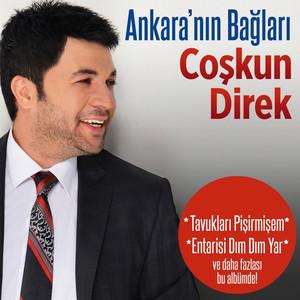 Ankara'nın Bağları Albümü