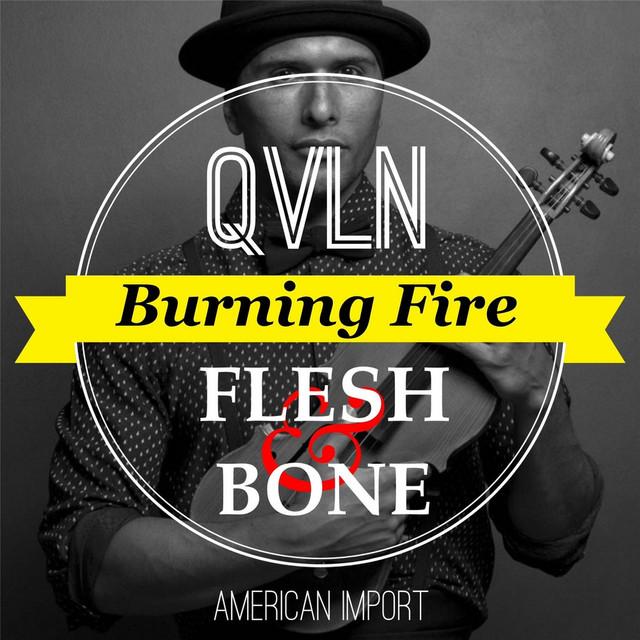 Artwork for Burning Fire (Flesh & Bone) by QVLN