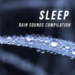 Sleep (Rain Sounds Compilation) album