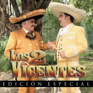 Los 2 Vicentes Albumcover
