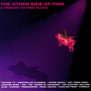 The Other Side Of Pink - A Tribute To Pink Floyd album