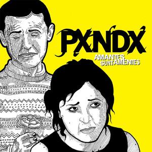 Amantes Sunt Amentes - Panda