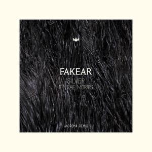 Silver (Androma Remix) Albümü