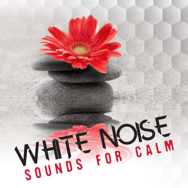 White Noise: Sounds for Calm Albumcover