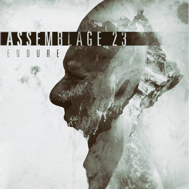 Album cover for Endure by Assemblage 23