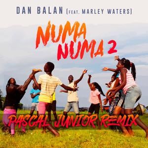 Numa Numa 2 (Pascal Junior Remix) Albümü