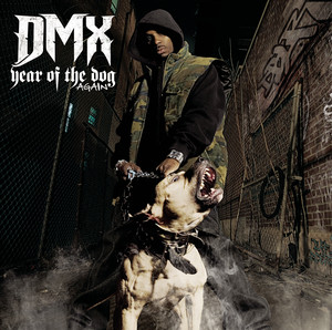 Year of the Dog... Again album