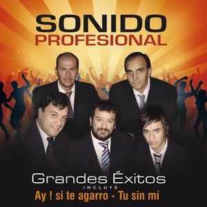 Grandes Éxitos - Sonido Profesional