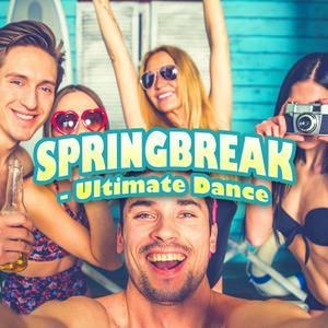 Springbreak - Ultimate Dance Tracks