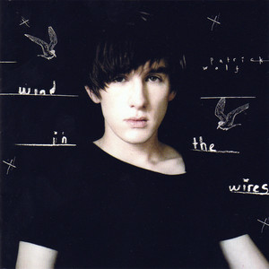 Wind in the Wires - Patrick Wolf