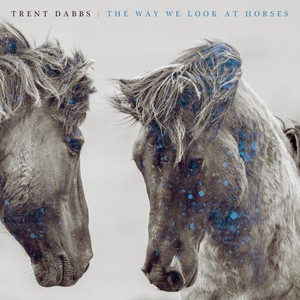 The Way We Look at Horses Albumcover