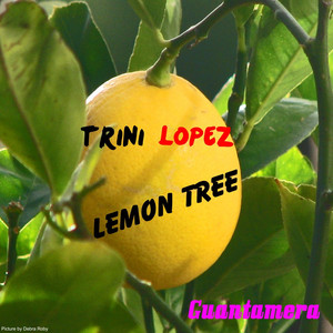Lemon Tree album