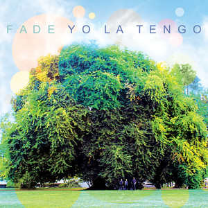 Yo La Tengo I'll Be Around cover