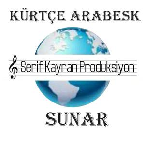 Kürtçe Arabesk Albümü