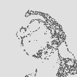 Drchamploo Artist | Chillhop