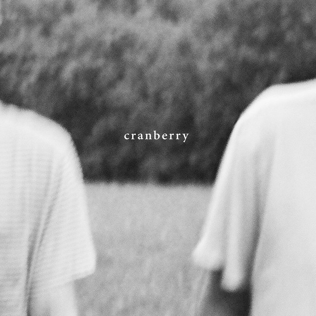 Album cover for Cranberry by Hovvdy