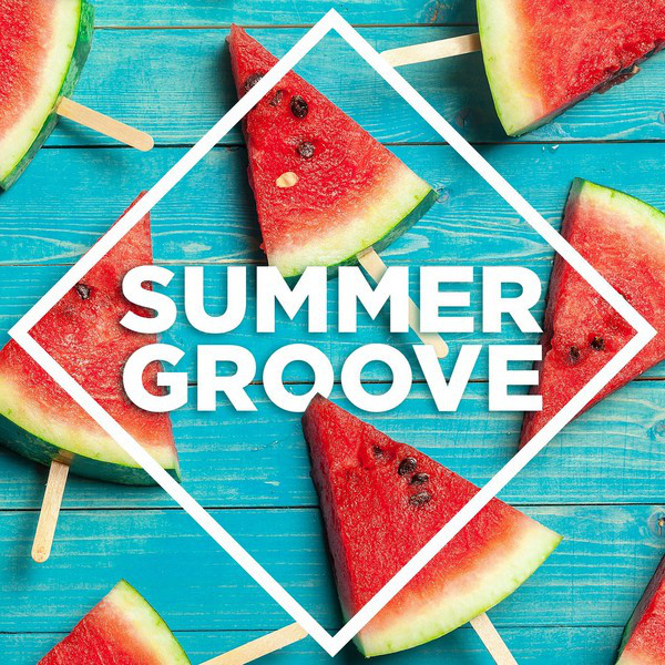 Various Artists Summer Groove album cover