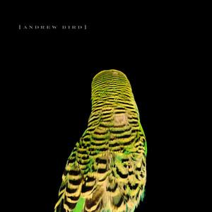 Armchair Apocrypha - Andrew Bird