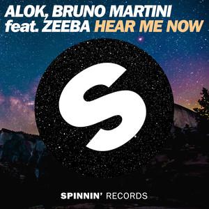 Alok – Hear me now