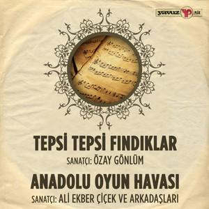 Tepsi Tepsi Fındık / Anadolu Oyun Havası (Ali Ekber Çiçek ve Arkadaşları) Albümü