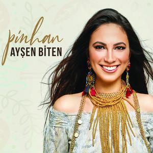 Pinhan Albümü