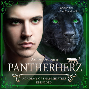 Pantherherz, Episode 3 - Fantasy-Serie (Academy of Shapeshifters)