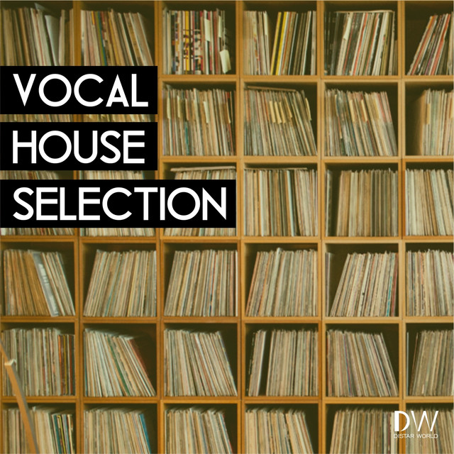 Vocal House Selection (A Finest Selection of Vocal House, Groovy Soulful, Funky House Tracks)