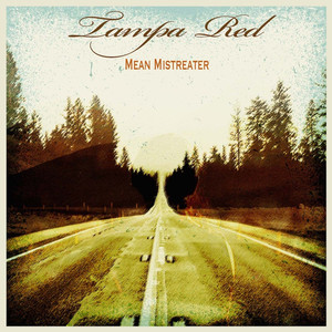 Mean Mistreater Blues album