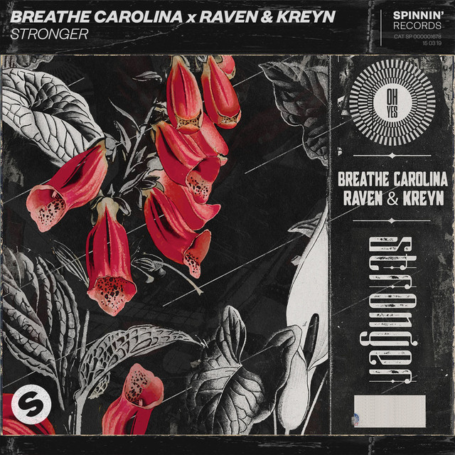 Breathe Carolina & Raven & Kreyn - Stronger