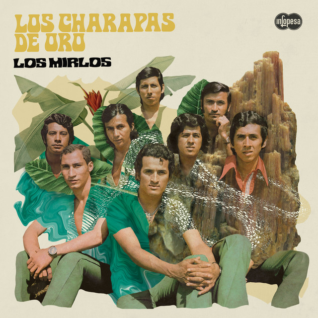 Album cover for Los Charapas de Oro by Los Mirlos