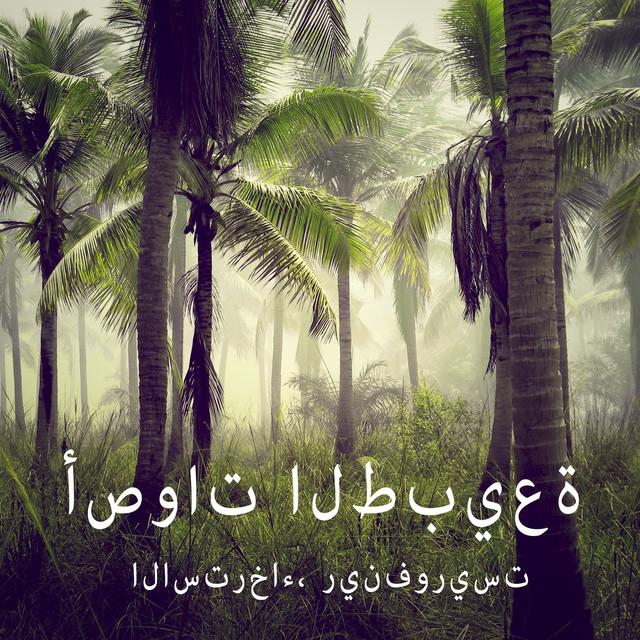 Album cover for الاسترخاء، رينفوريست by أصوات الطبيعة