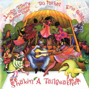 Shakin' a Tailfeather album