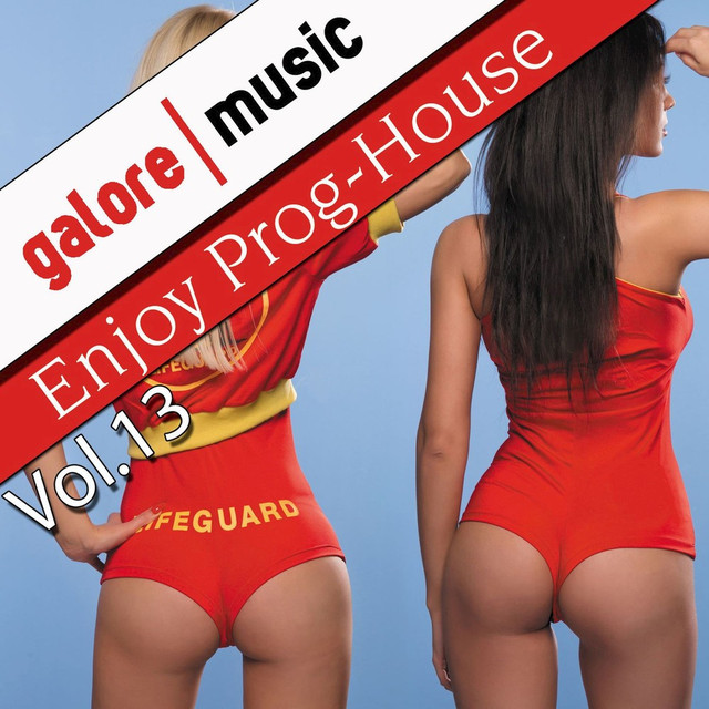 Enjoy Prog-House, Vol. 13 Albumcover