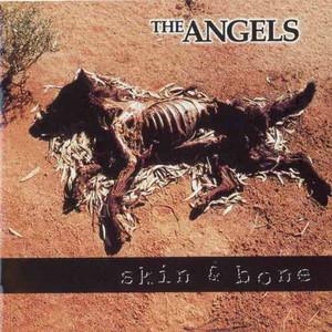 Skin & Bone album