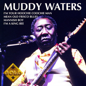 Muddy Waters Albümü