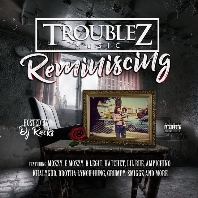 Troublez