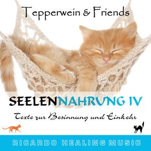 Seelennahrung 4: Texte zur Besinnung und Einkehr (Tepperwein and Friends) Hörbuch kostenlos