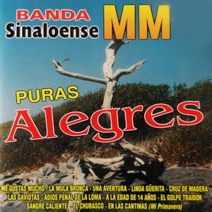 Puras Alegres Albumcover