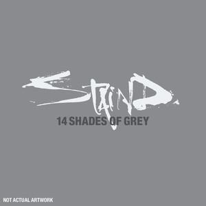 14 Shades Of Grey (US Amended Version) Albümü