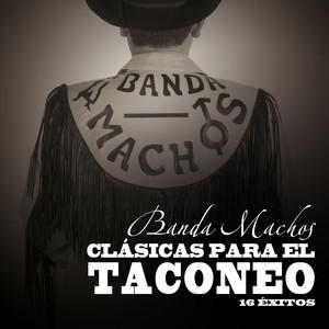 Banda Machos, Pedro Historia sin fin cover
