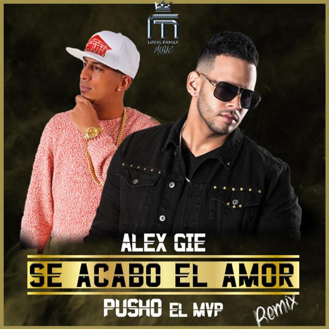 Se Acabo El Amor (Remix)