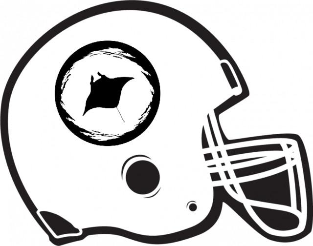 bbcd74d65 TUC Blackout: NFL Wild Card Weekend Recap, an episode from Robert ...
