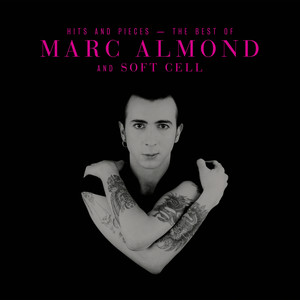 Gene Pitney, Marc Almond Something's Gotten Hold of My Heart cover