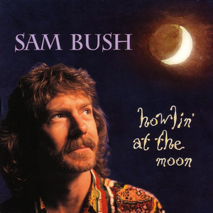 Sam Bush Hold On cover